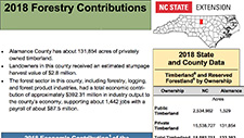 Forestry Impacts Infographic