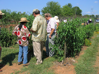 Attendees discussing beneficial insects at the Student Farm at the CCCC campus in Pittsboro
