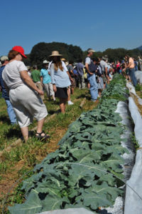 Cover photo for Horticulture Industry and NC State: A Partnership That Works!