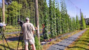 film crew visiting the hop yard