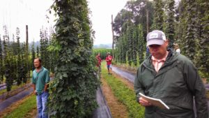 Cover photo for Early Bird Registration for NC-VA Hops Conference in March Ends Soon!