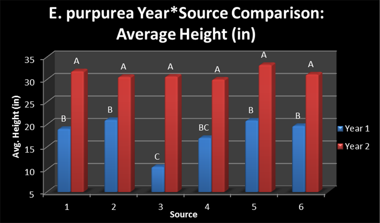 Figure 1. The average final plant height of E. purpurea sources in 2012 and 2013.