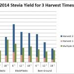 Stevia Yield Graph