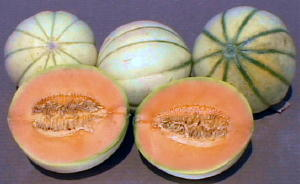 sliced and whole melons