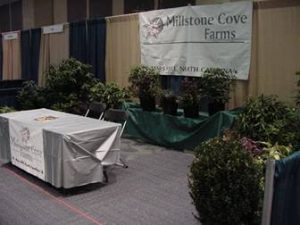 Millstone Cove Farms ornamentals