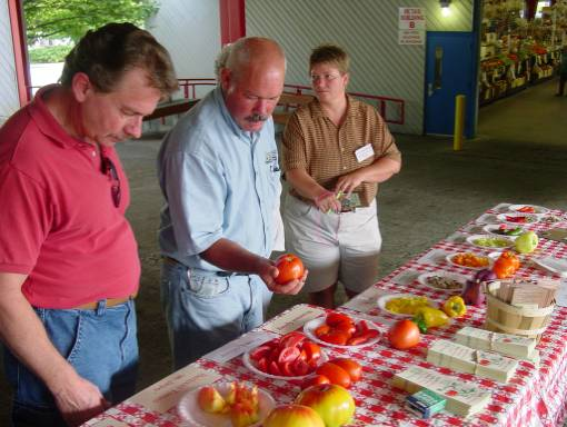 participants doing heirloom tomato and pepper taste test