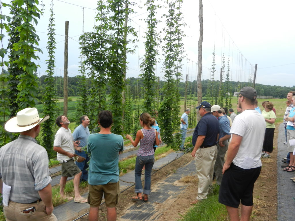 Participants at the annual Hop Yard Field Day.