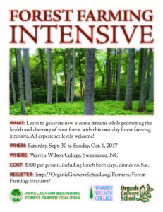 Cover photo for Beginning Forest Farming: A Weekend Workshop in Western NC