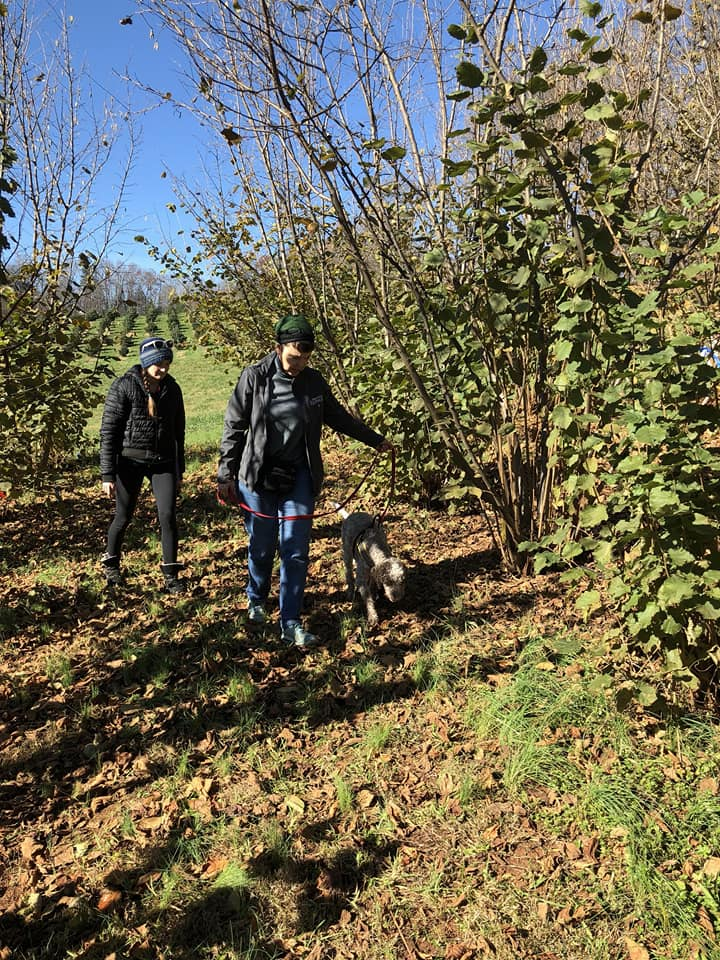 two women and a dog hunting for truffles