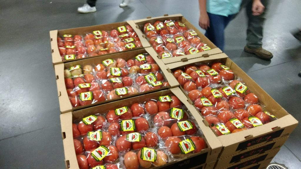 tomatoes packaged for shipping