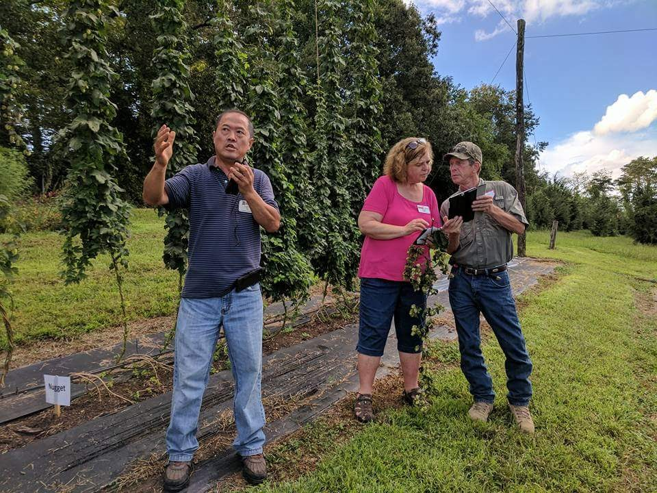 Dr. Luping Qu, hops breeder, describing his work at a hops field day