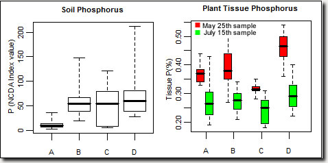 Phosphorus graph