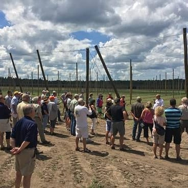 Hops field day in Michigan. (Photo borrowed from one of Rob Sirrine's extension publications).
