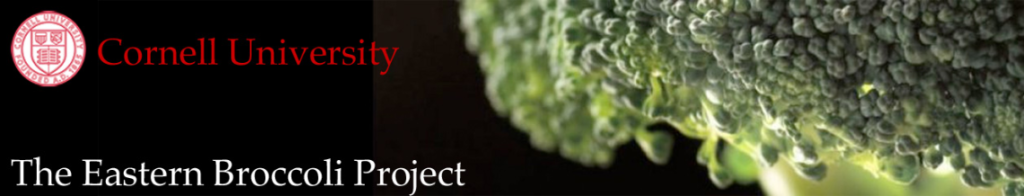 Eastern Broccoli Project logo