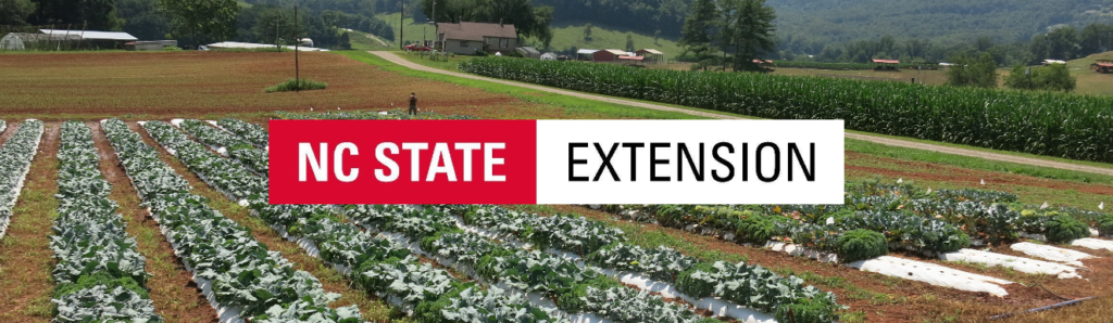 field of broccoli with NC Extension logo on top
