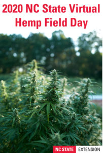 Cover photo for 2020 Hemp Field Day Is Live!