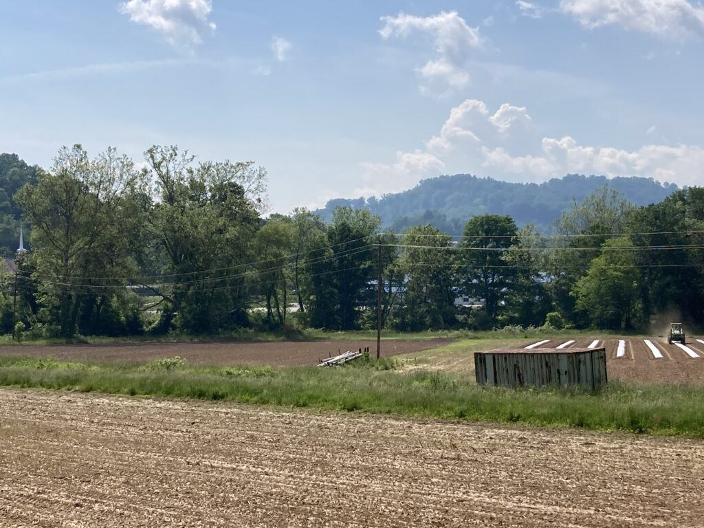 hemp research field site with mountains